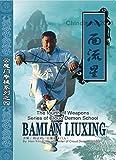 Cloud Demon 8 Directions LiuXing (Meteor) Whip by Han Yiling DVD