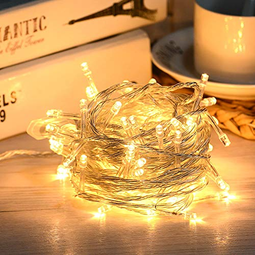 LED String Lights 33 ft with 100 LEDs, Rusee 8 Modes LED String Lights Plug in with Tail Plug Waterproof IP44 for DIY Bedroom, Patio, Garden, Gate, Yard, Party, Wedding (Warm White)