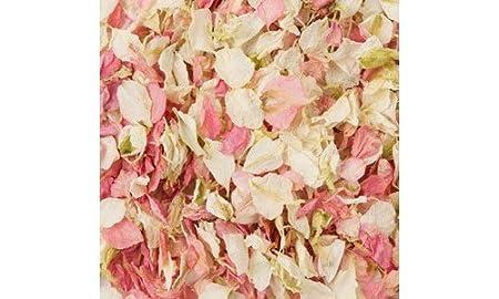 50 biodegradable boda confeti secas (Delphinium pétalos en ...