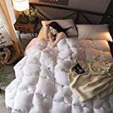 LU- Autumn And Winter Duvet Cotton Quilts Cotton Quilt Thick Single And Double ( Size : King-200230cm )