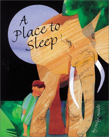 A Place to Sleep pdf epub