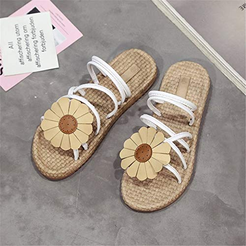Wangcui Blanc Fleurs Chaussures Taille Bohème 40 Femmes Couleur Antidérapantes Sandales Noir Sandales Plates Vert EU 6q6Sr1nw