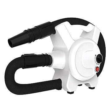 Secador De Perros, Mascota Aseo Secador de Pelo 2200W Soplo Máquina Ruido bajo Profesional Aseo Velocidad Ajustable (Blanco): Amazon.es: Hogar