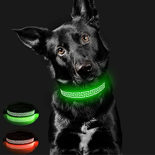Candofly Glowing LED Dog Collar - Rechargeable Light Up Dog Collars Reflective Pet Collar Glow in The Dark Dog Lights for Night Walking & Camping Perfect for Small Medium Large Dogs (Green, X-Large)