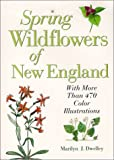 Spring Wildflowers of New England, Marilyn J. Dwelley, 0892724897