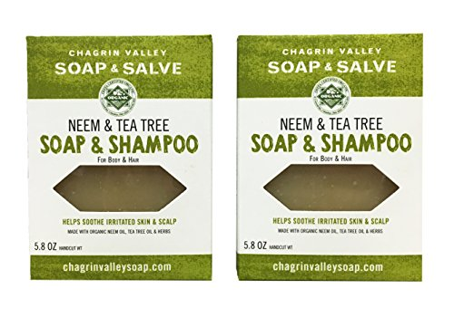 Organic Soap Chagrin Valley Salve product image