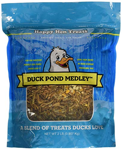 Happy Hen Treats Duck Pond -