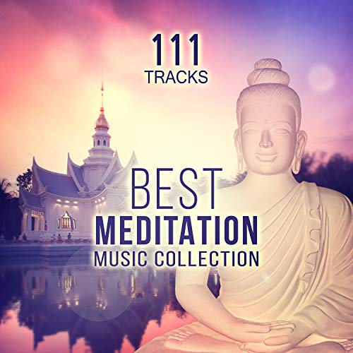 111 Tracks: Best Meditation Music Collection - Serenity Nature Sounds (Springwater, Birds & Gentle Rain) Yoga, Relaxing Instrumental Songs and Transcendental Meditation Mantras for Zen Garden (Best Meditation Music Artists)
