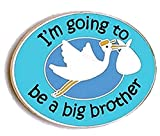 Big Brother Pins