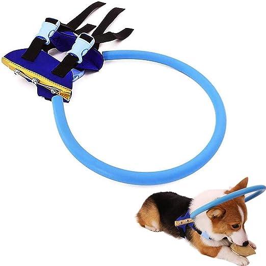 Caige Anti-colisión Collar de Perro, Ajustable Ciego del arnés del ...