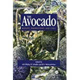 Avocado: Botany, Production and Uses by A. W. Whiley (2002-07-03)