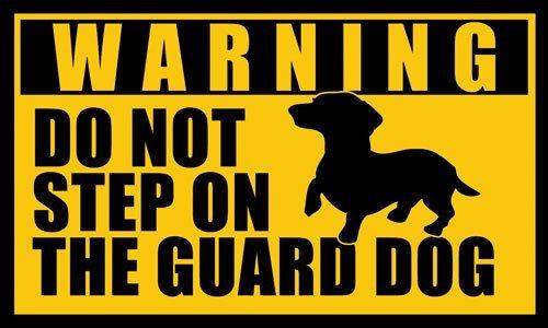 American Vinyl Dachshund Do Not Step on The Guard Dog Sticker (dach weener Weiner)