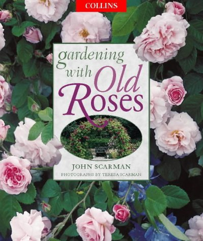 Gardening With Old Roses