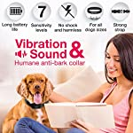 DogRook-Dog-Bark-Collar-Humane-Anti-Barking-Training-Collar-Vibration-No-Shock-Dog-Collar-Stop-Barking-Collar-for-Small-Medium-Large-Dogs-Best-No-Barking-Control-Dog-Collar