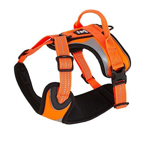Hurtta Active Dazzle Dog Harness, Hi-Viz Orange, 24-32 in