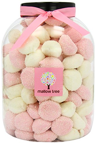 List of the Top 9 mallow tree you can buy in 2019