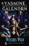Witches Wild (Bewitching Bedlam) (Volume 4)