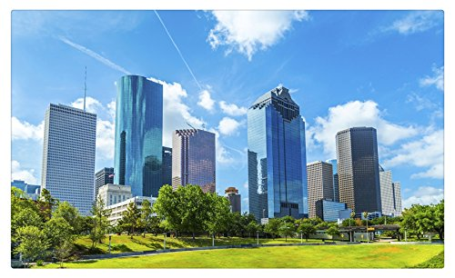 USA Skyscrapers Houses Lawn Trees Texas Houston Cities travel sites Postcard Post card