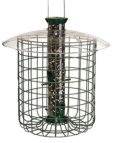 Droll Yankee Sunflower Bird Feeder (Droll Yankees Squirrel Proof Bird Feeder, Sunflower Domed Caged Bird Feeder SDC, 15 Inch, 1 Pound Seed Capacity, 4 Ports, Green)