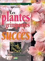 Les plantes grimpantes avec succès (Archive Jardina)