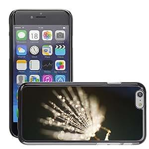Super Stellar Slim PC Hard Case Cover Skin Armor Shell Protection // M00049583 blur sparkle shallow sunlight dof // Apple iPhone 6 4.7