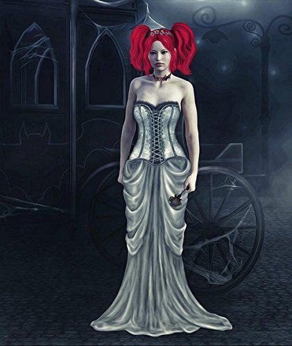Gifts Delight Laminated 24x28 inches Poster: Bride Dark Dark Bride Gothic Fantasy Halloween Female Mystery Mysterious Pale Pale Skin Black Rose -