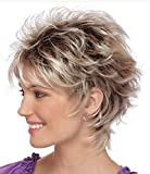 #3: YIMANEILI Short Straight Fluffy Gradient Bob Hair Wigs for Women(Brown Gradient Gray)