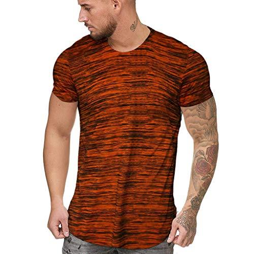 Zackate Men's Summer Slim Fit Stripe Printed Short Sleeved T-Shirts Slim Fit Sporty Sweatshirts Top Blouse ()