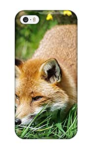 Best 6282982K506182869 fox foxes grass forest animal Anime Pop Culture Hard Plastic iPhone 5/5s cases