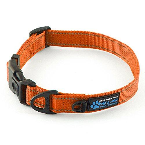 best reflective dog collar