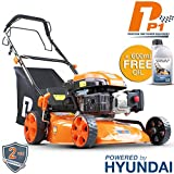 Hyundai Engine P1PE P4600SP 139cc Self Propelled Petrol Lawnmowers, 7 Position...