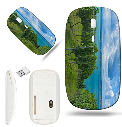 Luxlady Wireless Mouse White Base Travel 2.4G Wireless Mice with USB Receiver, 1000 DPI for notebook, pc, laptop, macdesign IMAGE ID: 26979598 a beautiful downhill vineyard by the lake constance