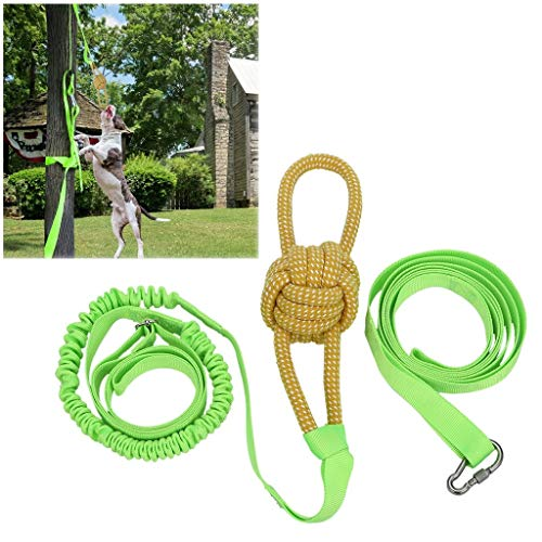 Aeanm Outdoor Hanging Bungee Dog Toy, Interactive Tether Tug Toy with Chew Rope Toy for Pitbull & Small to Large Dogs to Exercise & Solo Play, Durable Tugger for Tug of War (Multicolour)
