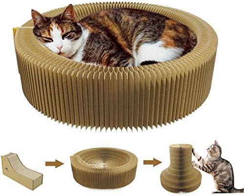 Harmoneazy - Cesta rascador para Gatos, 50 cm, de cartón de Alta Densidad, Plegable y portátil, Confort, el Bienestar y Las Garras de su Gato: Amazon.es: Productos para mascotas