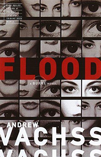 Flood (Burke Series Book 1)