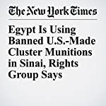 Egypt Is Using Banned U.S.-Made Cluster Munitions in Sinai, Rights Group Says | Rick Gladstone,Nour Youssef