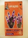 Momentum Happy Halloween Indoor/Outdoor Mini Lights Bulbs, Black Cord, Purple Review