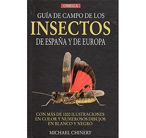 GUIA CAMPO INSECTOS DE ESPAÑA Y EUROPA GUIAS DEL NATURALISTA ...