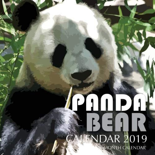 Panda Bear Calendar 2019: 16 Month Calendar