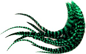 1 Dozen - Medium Peacock Green Grizzly Rooster Saddle Whiting Hair Extension Feathers Fly Tying Supply   Moonlight Feather