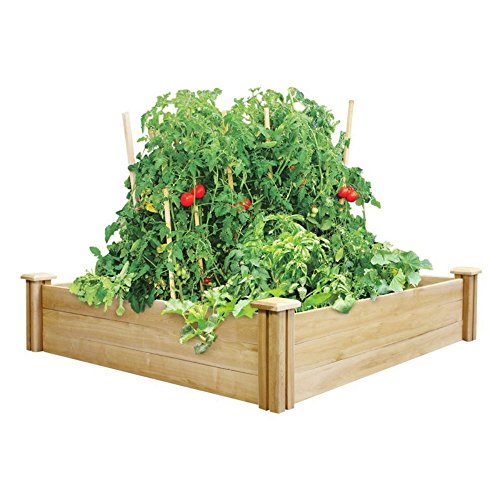Four Cedar (Greenes Fence Cedar Raised Garden Bed, (4 Ft. X 4 Ft. X 10.5 In.))