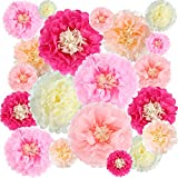 Gejoy 20 Pieces Paper Flower Tissue Paper Chrysanth Flowers DIY Crafting for Wedding Backdrop Nursery Wall Decoration (Color Set 1)