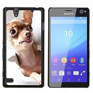EJOOY---Cubierta de la caja de protección para la piel dura ** Sony Xperia C4 ** --Chihuahua Oro Brown Dog monedero Tiny