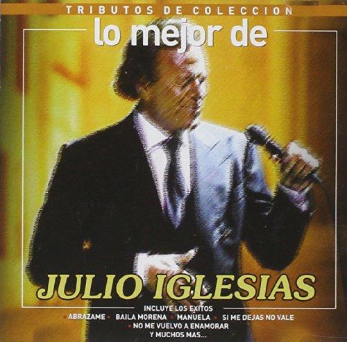 Julio Iglesias - Lo Mejor De Julio Iglesias-Tributo Coleccion - Zortam Music