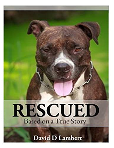 Rescued: Based on a True Dog Story