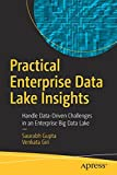 Practical Enterprise Data Lake Insights: Handle Data-Driven Challenges in an Enterprise Big Data Lake