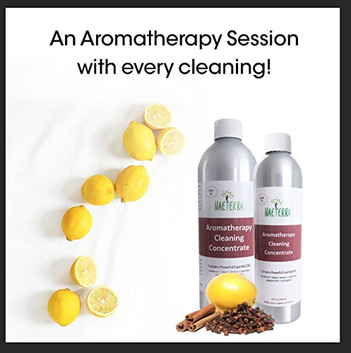 Naeterra Aromatherapy Cleaning Concentrate, 16 Ounce makes 6 gallons -100% Herbal and Natural with Powerful Essential Oils - Cinnamon, Clove, Lemon, Eucalyptus, Peppermint and Rosemary