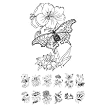 """Adult Coloring Book (24 pages 6""""x8"""") Butterfly and Flower FLONZ Vintage Designs"""