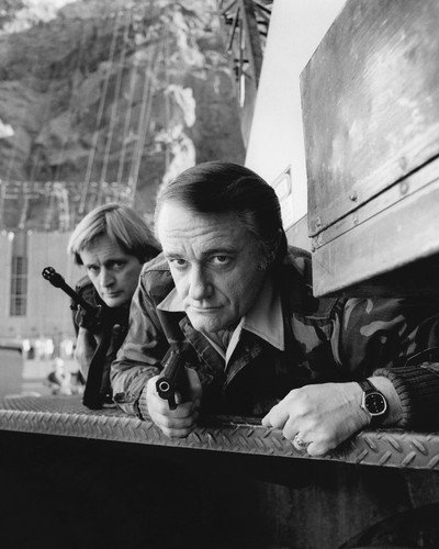 Robert Vaughn and David McCallum in The Man from U.N.C.L.E. in camo jackets and guns Return of 1983 movie 8x10 Promotional Photograph