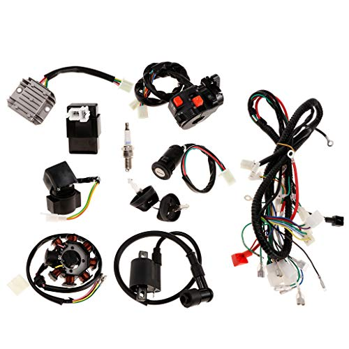 (Baosity Complete Electrics CDI Coil Wiring Loom Harness Kit for 150cc 250cc ATV)